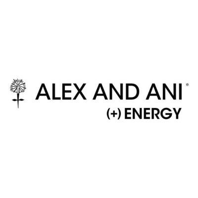 Alex And Ani Vouchers