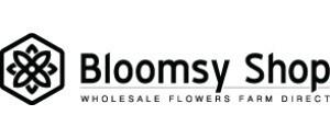 BloomsyShop Vouchers