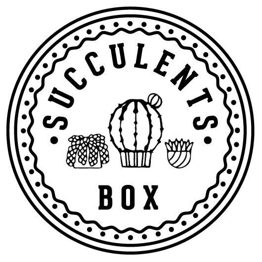 Succulents Box Vouchers